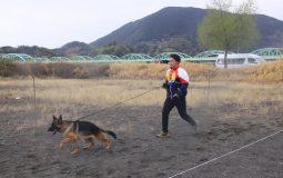【重要】10/3 スーパーランデス展覧会&訓練競技会 開催!