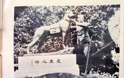 軍犬を称え慰霊する碑は日本各地に