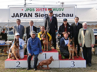 JPDS2017成犬牝